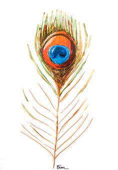 Catchii illustration, drawing, feather, peacock, orange, yellow, blue, green