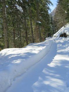 Val Saisera, Tarvisio