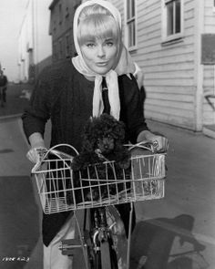 Elke Sommer w/ poodle pup Biking With Dog, Pin Up, Bike Rider, Bicycle Girl, Vintage Photographs, Little Boys, Baby Strollers, Celebs, Celebrities
