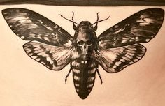 death hawk moth tattoo b&g