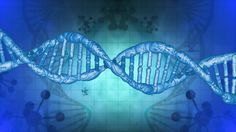 We need a secure anonymous open access genetic database for researchers #genetics #DNA