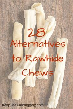 28 Safe Alternatives to Rawhide Chew Dog Treats Check out the variety of…
