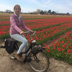 #Solex tour door de #bollenstreek!