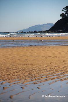 Playa de La Griega Colunga. Playas de Asturias [Más info] http://www.desdeasturias.com/playas-de-caravia-y-colunga/