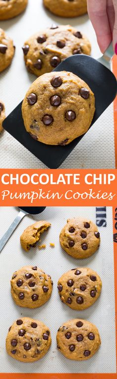 Soft and Cakey Pumpkin Chocolate Chip Cookies loaded with semi-sweet chocolate chips. Thick, spiced and super easy to make! The perfect cookie for Fall!