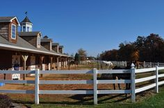 Riding Stables with turnouts by the stalls so that the horses are not locked up all day in a dark little place.