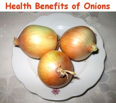 The health benefits of onions can help certain people with their immune systems to get that extra boost of healthy antioxidants. This particular food is also high in sulfur, which in some cases has been used as a natural remedy to the equivalent of an antibiotic that doctors will give to their patients. For any person who might have certain digestive issues, consuming even a small amount of raw onion on a daily basis can help to get that under control.