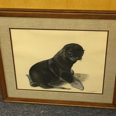 Art - Baby Seal Super Cool Stuff, Baby Seal, Primitive Antiques, Antique Art, Kitsch, Pin Up, Auction, Classic, Animals