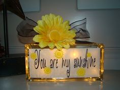 You are my sunshine Glass Block Night Light by VinylSigns4him, $22.00
