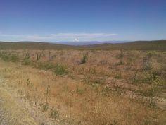 Piedra libre al Volcán Lanín