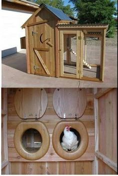 chicken coop ideas - Google Search