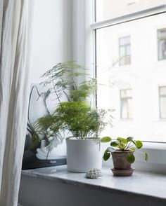 Interior inspiration | Green living