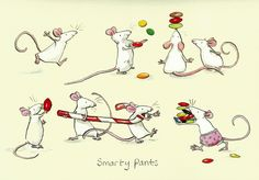 Smarty pants - Two Bad Mice