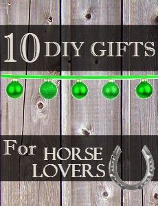 Top 10 DIY Gifts for Horse Lovers | Savvy Horsewoman