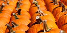 October News & Events from Crescent Moon Gifts!