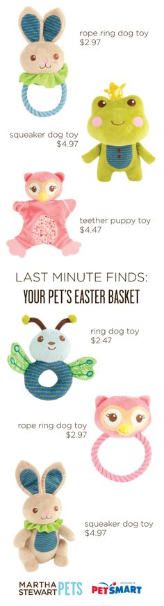 Last minute #EasterBasket finds for your pet - and all under $5. Check out all of the #MarthaStewartPets toys at #PetSmart today.