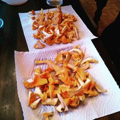When you have to eat chanterelles every day #finlandsux Burns, Carrots, Vegetables, Eat, Instagram, Food, Meal, Essen, Carrot