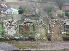 A stunning collection of old gravestones, Welsh Newton,nr Monmouth