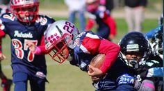 Dale City Sports U8 Panthers