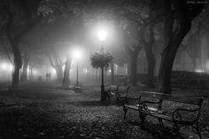 Foggy Day by ilias nikoloulis