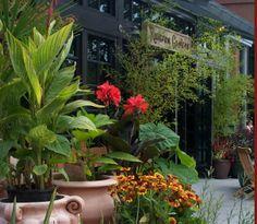 One of my favorite garden stores