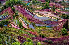 yuangyang rice terrace by enrico barletta - Photo 168991833 / 500px