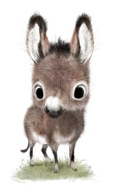 sydwiki: I love donkeys!!!!
