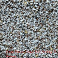 Dream Weaver Soft Harmony II, Harmony solution dyed BCF polyester carpet.