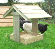 """Covered Chicken Dustbath~great idea to keep it from turning into a """"mudbath"""" area, lol!"""