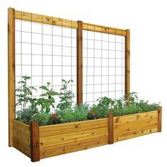 Planche de jardin de 34 x 95 x 19 po avec treillis de 95 x 80 po, fini non toxique