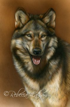 Pleasant Personality - Wolf, 5in x 7in, opaque and transparent watercolor with…