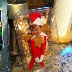 Elf on a shelf Cookie Monster