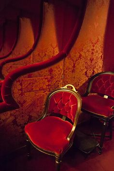 Plush red velvet seats in the box seating of Palais Garnier - Opera House, Paris France © Brian Jannsen Photography
