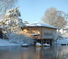 Japanese Island in #winter