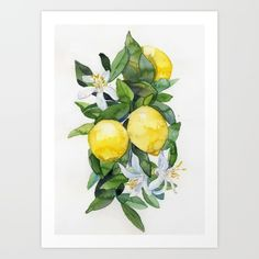 lemon, tee, akvarell, aquarell, mediterran, watercolor, watercolour