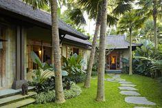 Among Palms and Rice Paddies in Bali