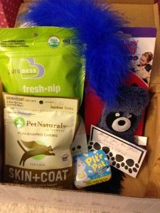 Bunny's Fur & Feathers FunPack ~ Cat Edition March 2014