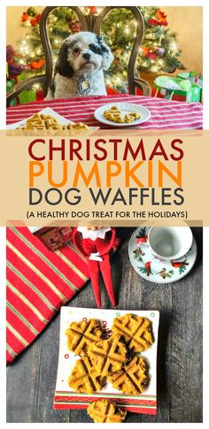 These Christmas pumpkin dog waffles are a healthy and easy way to treat your pet this holiday. Made with only 5 ingredients and you can feel good about giving your pup their own special breakfast. Dog Cookie Recipes, Homemade Dog Cookies, Dog Biscuit Recipes, Homemade Dog Food, Dog Treat Recipes, Dog Food Recipes, Homemade Gifts, Puppy Treats, Diy Dog Treats