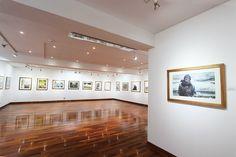 Sala de Arte del Centro Cultural El Olivar