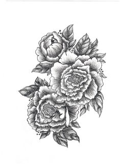 peony tattoo black and white - Buscar con Google