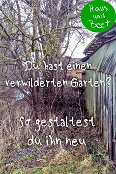 So fängst du an - Haus und Beet Overgrown garden? That's how you start! You can make your own dream garden out of every plot. Use the existing plants, the pointer plants, to id Backyard Vegetable Gardens, Garden Soil, Raised Garden Beds, Garden Plants, Diy Garden, Indoor Tree Plants, Trees To Plant, Garden Types, Garden Care