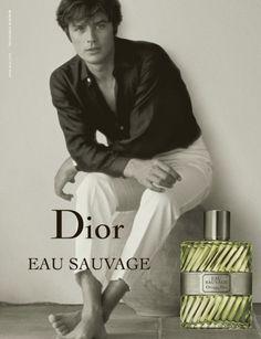 Icon-Icon - Objects of Desire Alain Delon, Sophia Loren, Anuncio Perfume, Anouchka Delon, Emmanuelle Béart, Jean Dujardin, Dior Perfume, Poses Photo, Beleza