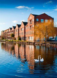 Dublin's picturesque Grand Canal, Ireland