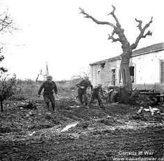 The Moro Valley - L. to R.: Private L.N. Welbanks, Sergeant G.D. Adams and Private L.G. Thompson all of the 48th Canadian Highlanders during German counter attack. 10 Dec 1943, San Leonardo Di Ortona, Italy.
