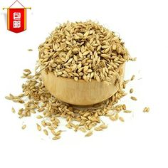 Malt malt barley malt of Chinese herbal medicine 1 pieces of mail (500g) >>> Check out the image by visiting the link.