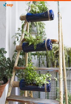 Existem diversas maneiras de criar um jardim vertical, desde garrafas pets, até pallets. Inspire-se em algumas ideias que separamos para você.