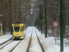 Tram near my house in Wolowe St Pierre, Brussels Streetcar Named Desire, Light Rail, Brussels, Homeland, Transportation, Beautiful Places, Around The Worlds, City, House