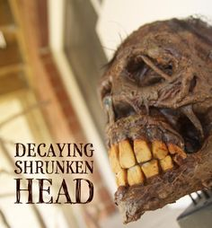 How to make a decaying shrunken head. (Go to site ~ VERY interesting!)