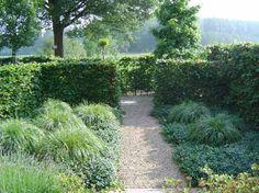 een beukenhaag en een tuin met coulissen
