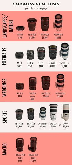 Best Photographic Lenses for Each Specialty #photography101 #lens #cameralenses #photography